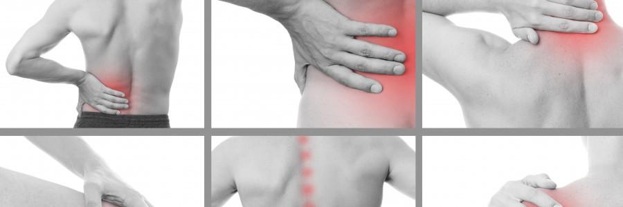 Sjukgymnastik/Fysioterapi